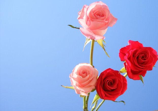tekenen van een laag gevoel van eigenwaarde bij het daten Dating berichten tips